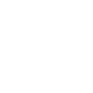 ruger weapons